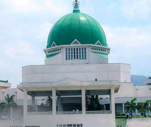 Hope For Nigerian Youth As Peace Corps Bill Passes Second Reading In Senate